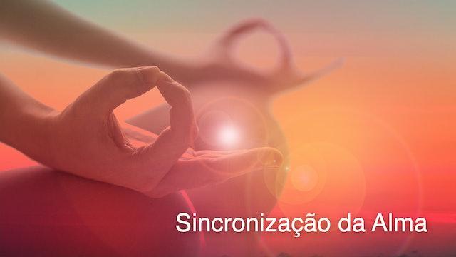 Soul Sync (Portuguese)