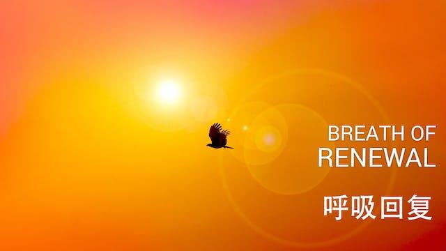 呼吸回复 (Breath of Renewal - Chinese)