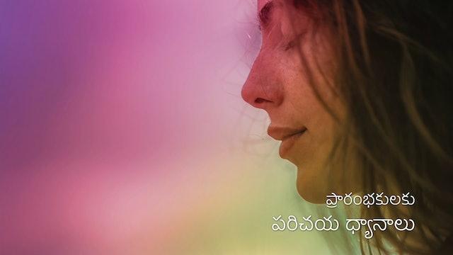 ప్రారంభకుల ధ్యానం  Meditation For Beginners (Telugu)
