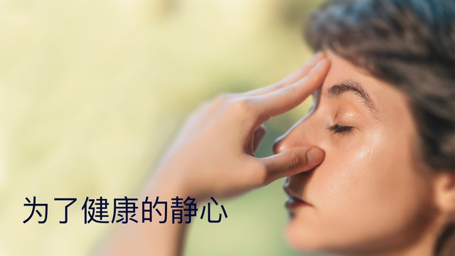 Meditation For Health (Chinese)
