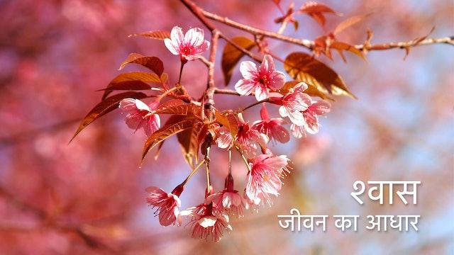 श्वास - जीवन आधार  Breathe as life (Hindi)