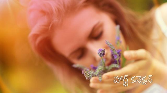 హృదయం తో అనుసంధానం : మూడవ రోజు.  Day 3 - Heart Connection (Telugu)