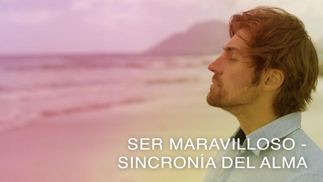 Ser Maravilloso - Sincronía del Alma (Spanish)