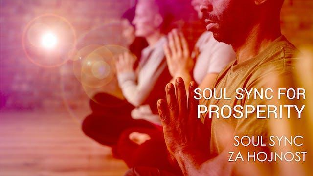 04 Soul Sync za hojnost (Czech)