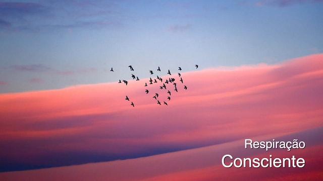 Respiração Consciente (Conscious Breath - Portuguese)