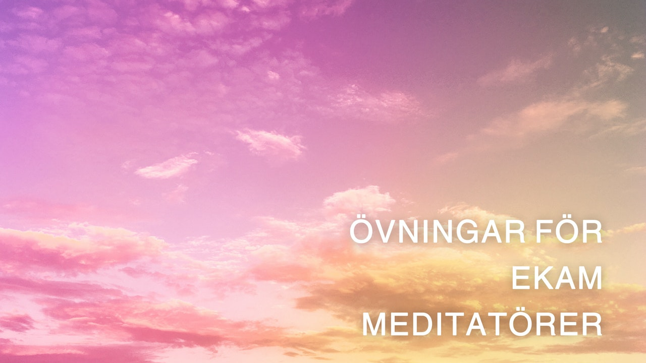 Ekam Meditators Practice (Swedish)