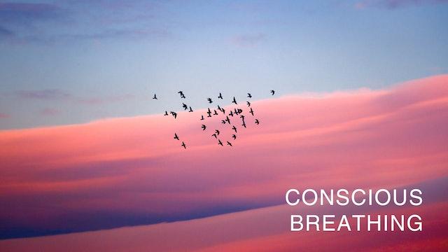 Conscious Breath