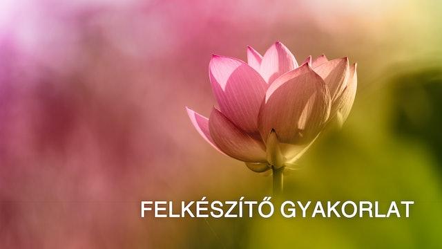 Preparatory Practice - Introduction (Hungarian)