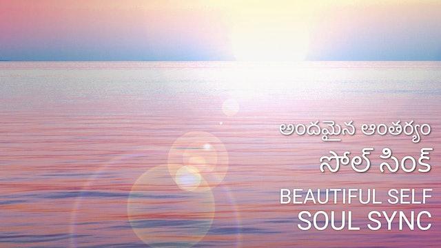 అందమైన ఆంతర్యం - సోల్ సింక్  Beautiful self - Soul Sync (Telugu)