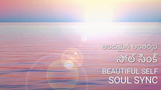 అందమైన ఆంతర్యం - సోల్ సింక్  Beautifu...