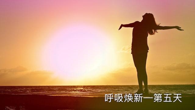 第五天:焕新呼吸 (Chinese)