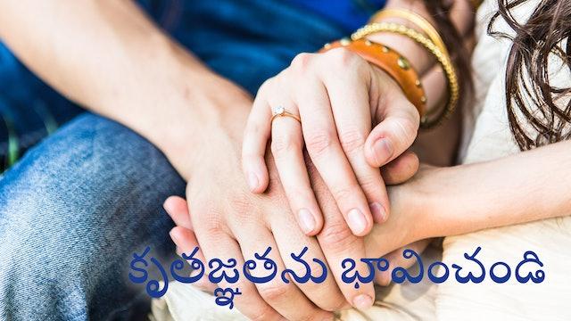 కృతజ్ఞతను భావించండి (Telugu)