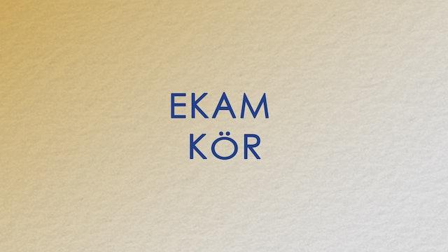 Ekam Circle (Hungarian)