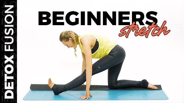 Day 2 - Beginner Total Body Stretch (30-Min)
