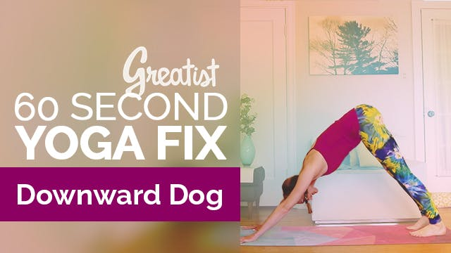 How to Do Downward Facing Dog | Yoga ...