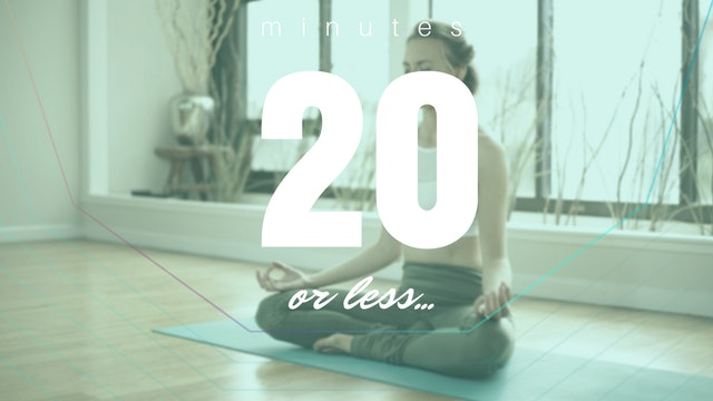 Meditations: 20 Minutes or Less