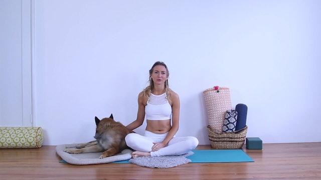 E.2.2: How to Teach Meditation