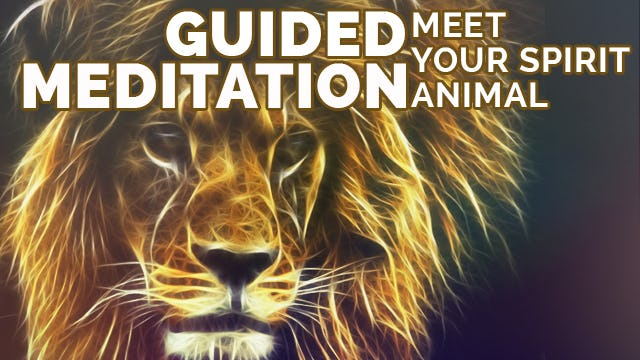 Meditation to Find Your Spirit Animal- What is My Spirit Animal- Relaxing Visualization