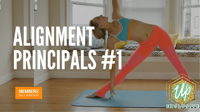 [Members Only] Alignment Principals Workshop #1