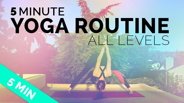 5 Minute Yoga Routine - All Levels - ...
