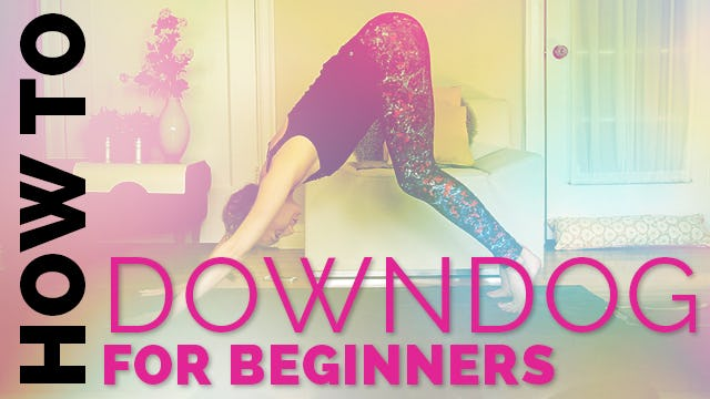How to do Downdog if Your Heels Don't Touch the Ground - Downdog Alignment Tips for Beginners