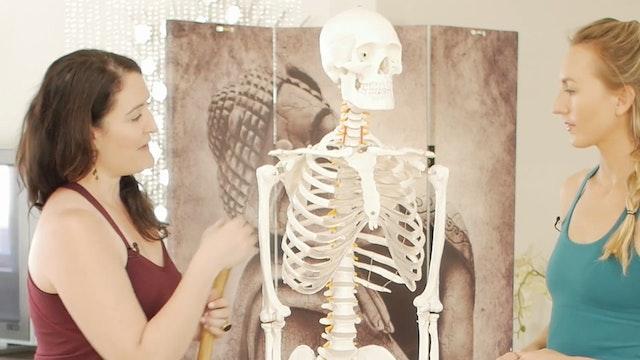 B.1.6 Meet Your Bones