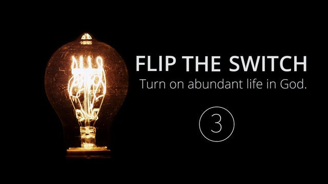 Flip the Switch 3: The Illumination o...