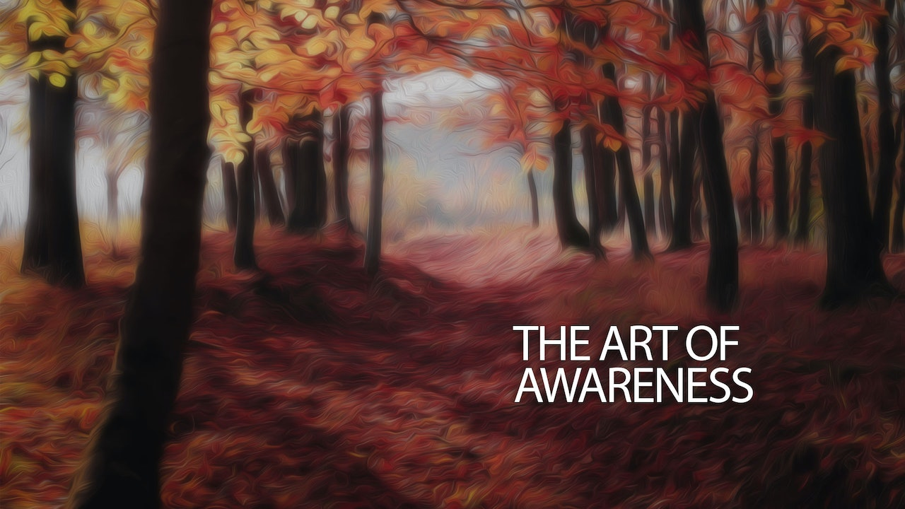 The Art of Awareness: Tuning Into Your Real Life