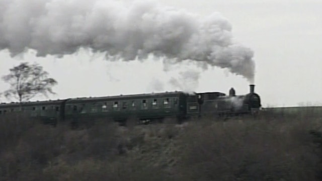 Smoke & Steam in the South
