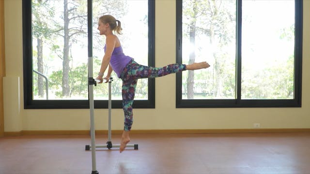 HIIT the BARRE Awesome Assets