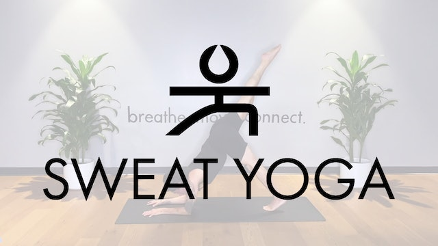 Sweat Yoga | Pincha Myerasana with Yancy Schwartz