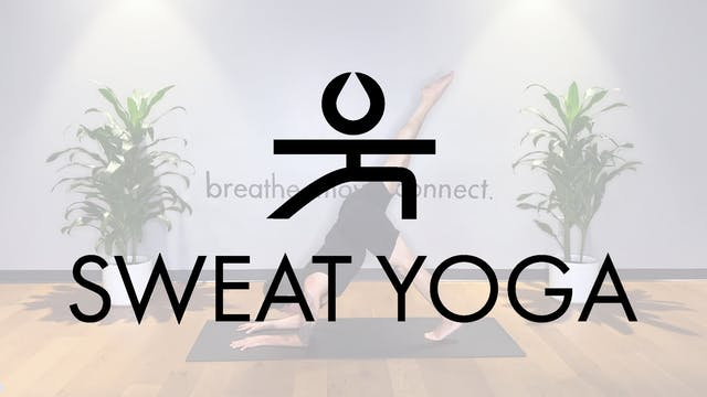 Sweat Yoga | Pincha Myerasana with Ya...