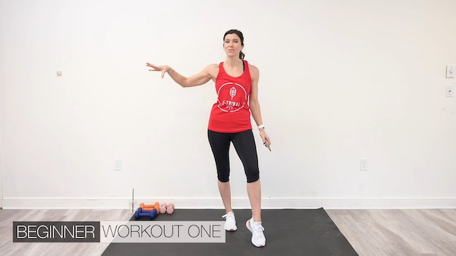 Beginner Workout Two