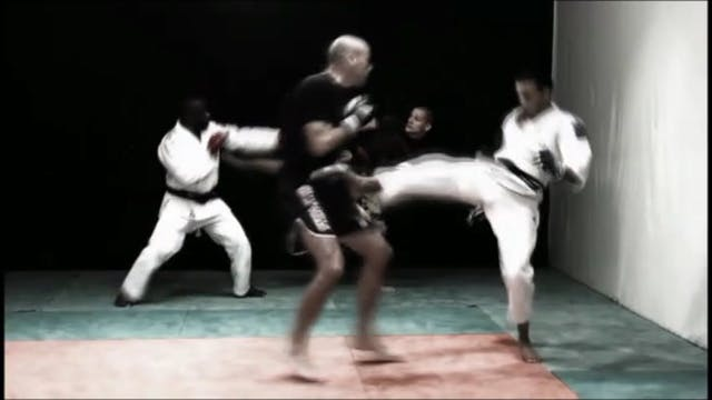 Ju-Jitsu The Art of Feinting DVD280