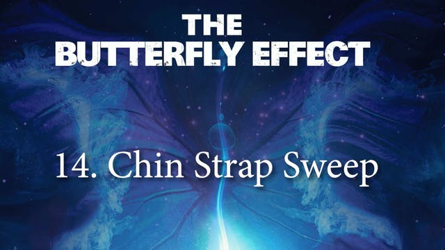 14 Chin Strap Sweep - Butterly Effect