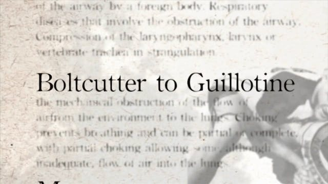 3 Boltcutter to Guillotine