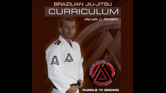 BJJ Curriculum Purple to Brown Marcello Monteiro