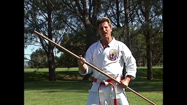Isshin Ryu Karate Vol 03 by Kim Murray