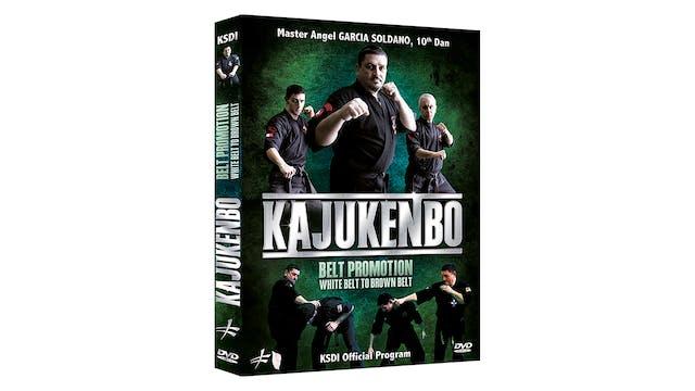 Kajukenbo Belt Promotion White Belt to Brown Belt