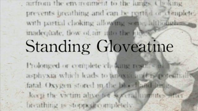 6 Standing Glovetine Darcepdia Englis...