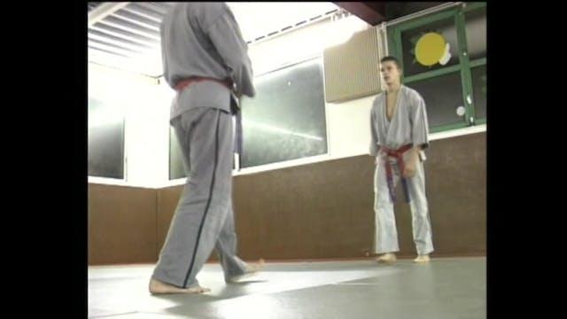 Ninja - The Secret Art of Ninjutsu DVD13
