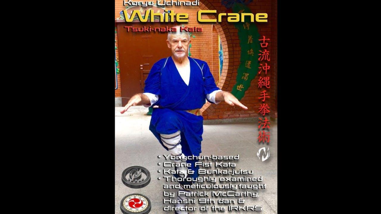 Koryu Uchinadi 1 White Crane Kata Patrick McCarthy