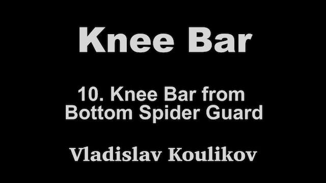 10. Knee Bar from Bottom Spider Guard...