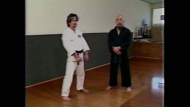 Chinese Kung Fu San by Gerald Okamura Vol 2