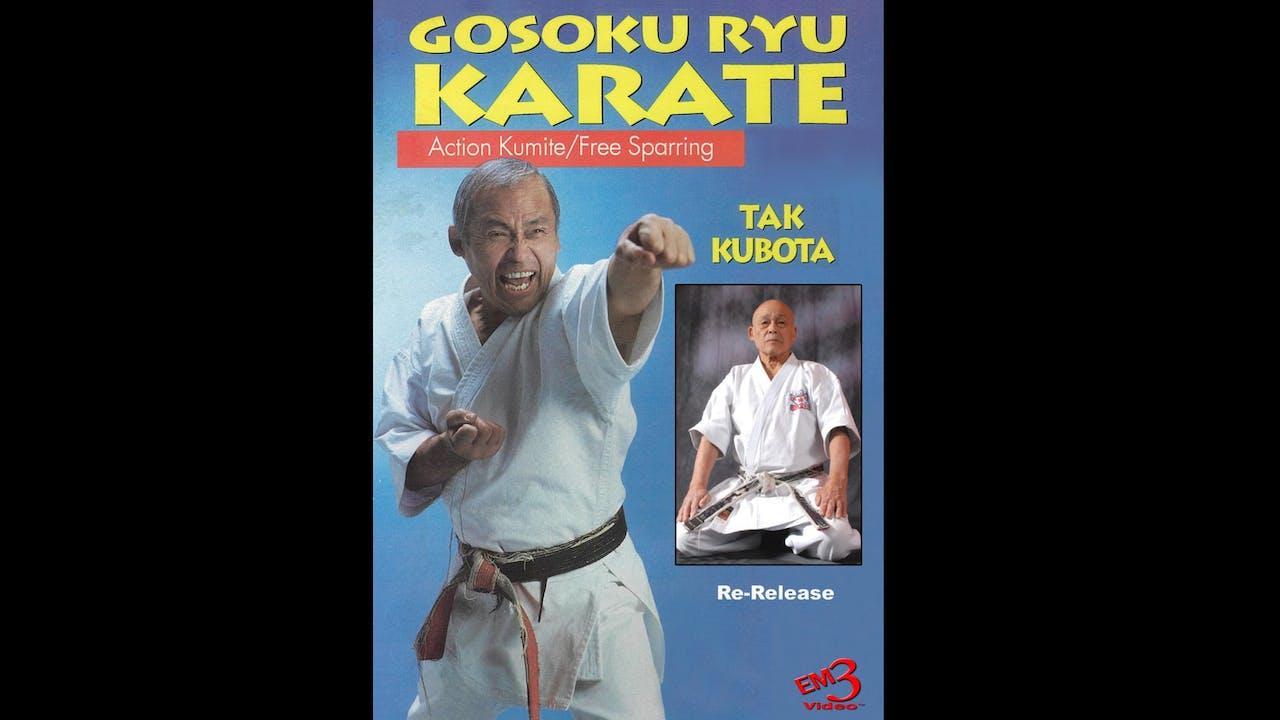 Gosoku Ryu Karate Action Kumite by Tak Kubota