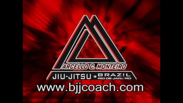 Effective Guard Passes Marcello Monteiro
