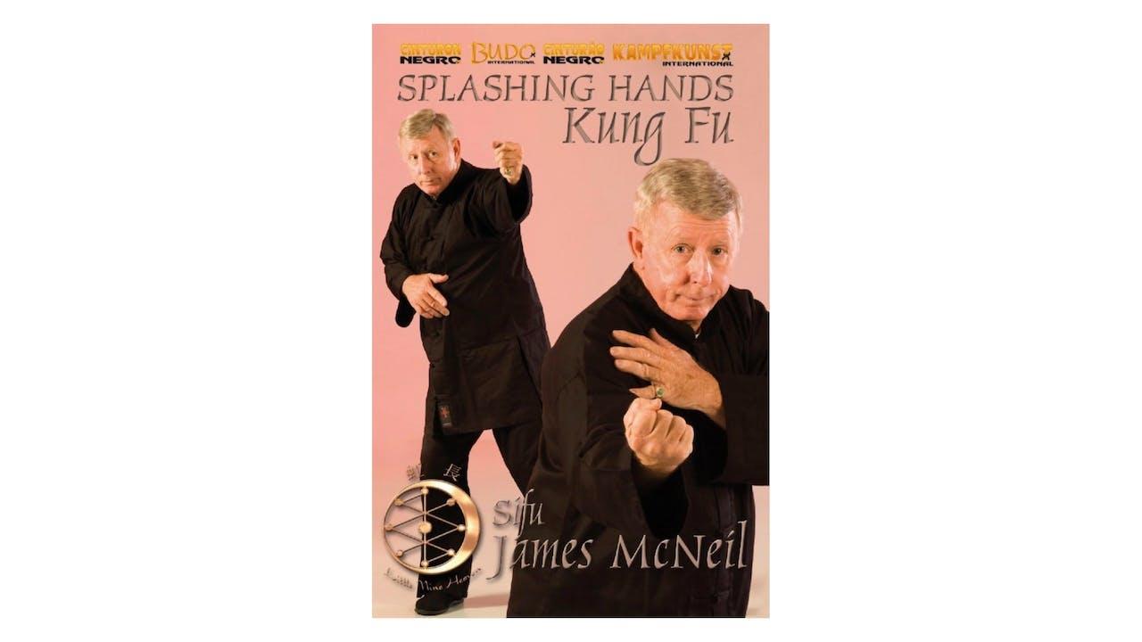 Kung Fu Splashing Hands by James McNeil