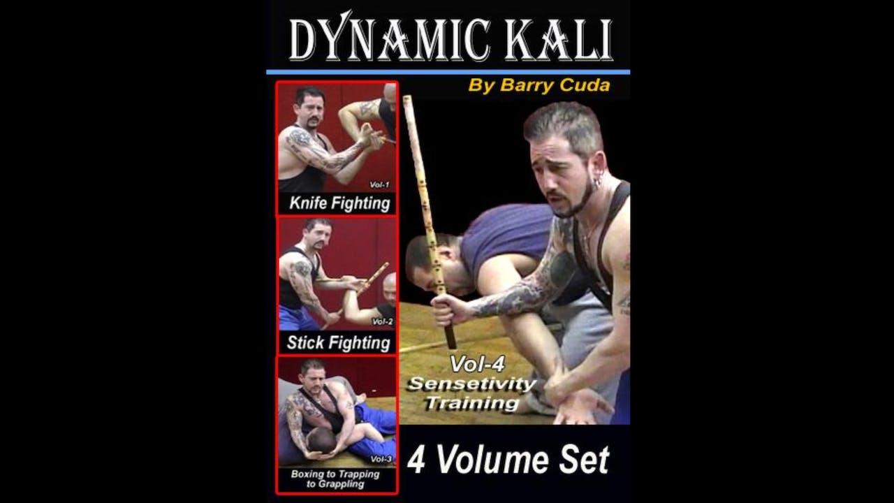 Dynamic Kali 4 Vol Series by Barry Cuda