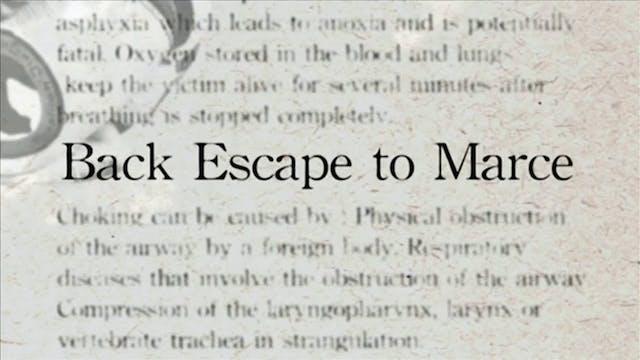 25 Back Escaoe to Marce Darcepedia En...