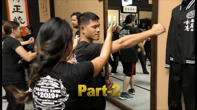 Wing Chun Sem 2019 Vol 2